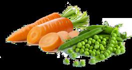MRKEV, kedlubna, hrášek, petrželová nať a sušené brusinky