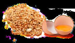 KROUPY a VLOČKY, vejce, pivovarské kvasnice, brusinky a lososový olej